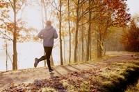 baranq / Shutterstock